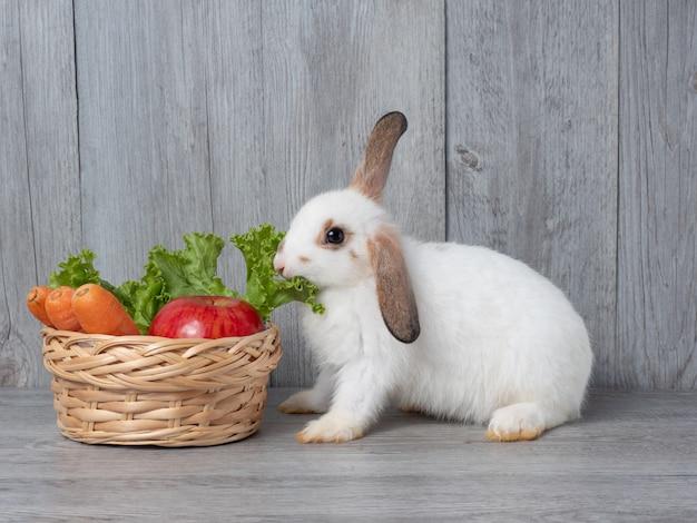 緑のレタスにんじんとリンゴを食べる白いかわいいウサギ