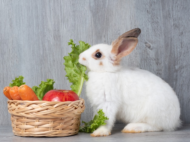 White cute rabbit  eating lettuce carrot and apple in the wooden basket.