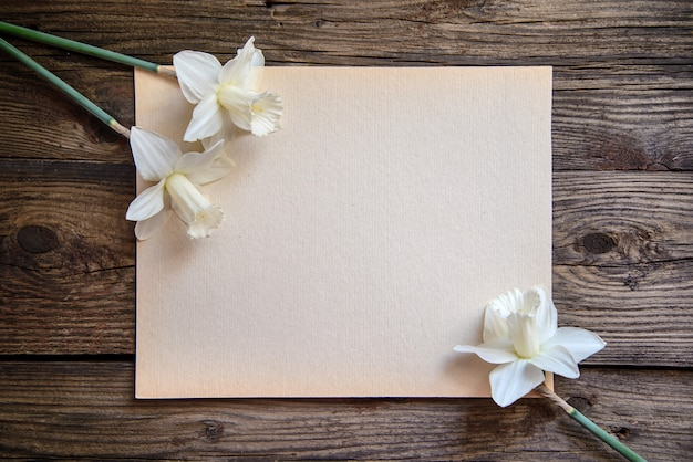 White daffodils on a piece of paper on wood background