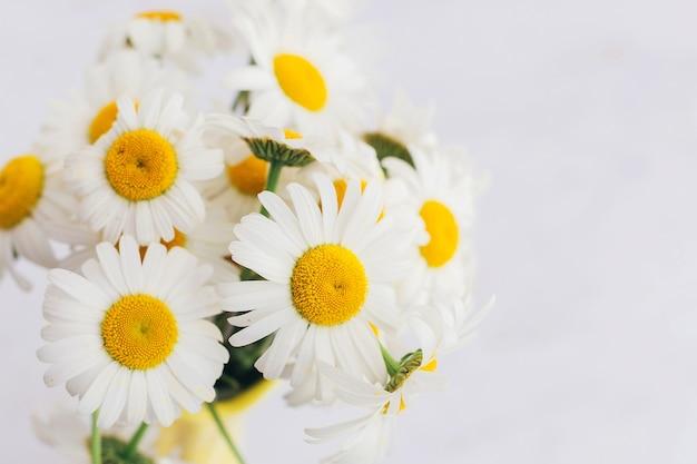 Белые ромашки в желтой вазе