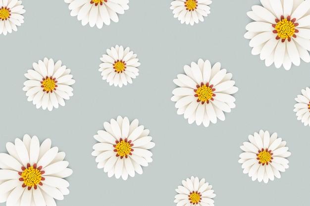 白色雏菊花浅蓝色背景