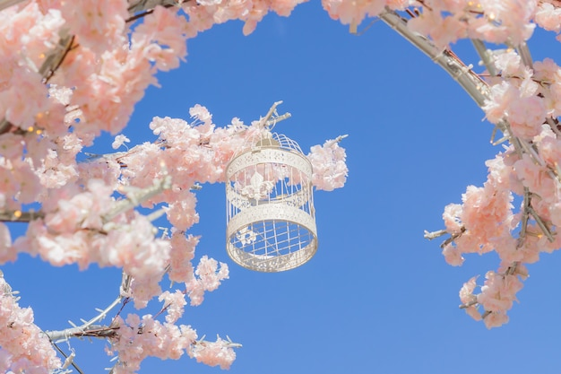 White decorative bird cage hanging on branch of blooming apple tree on sky background. spring city decoration