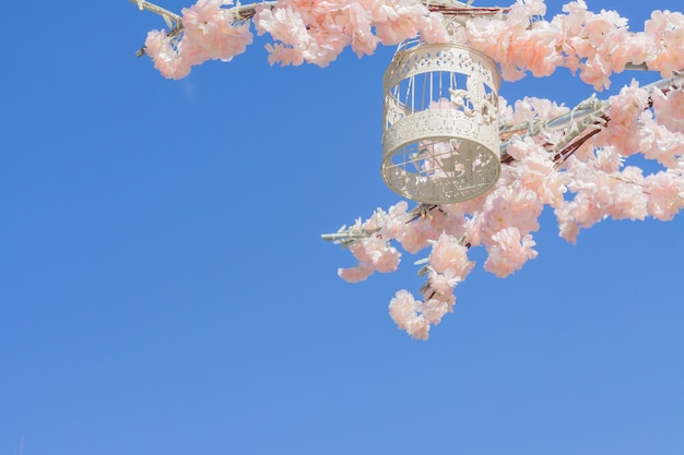 White decorative bird cage hanging on branch of blooming apple tree on sky background.