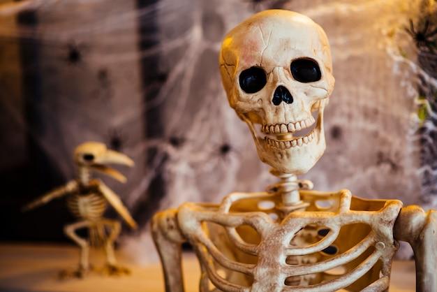 Белый декоративный скелет в студии