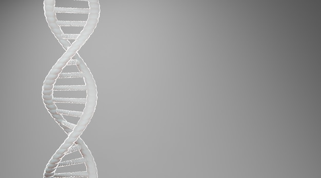 White dna structure abstract on grey background, 3d rendering.