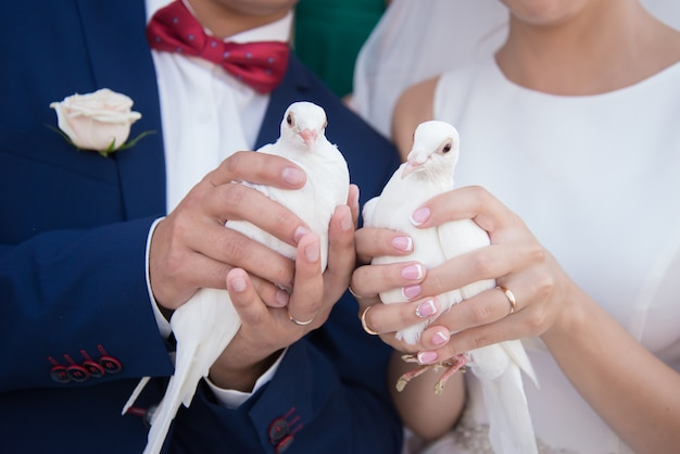 White doves in the hands of the bride and groom