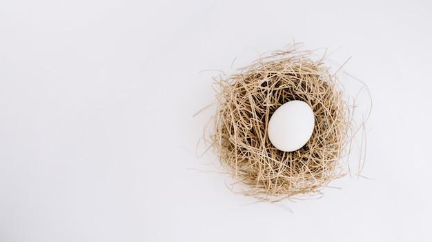 Белое яйцо в гнезде Premium Фотографии