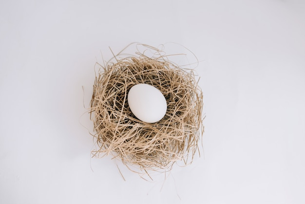 Белое яйцо в гнезде