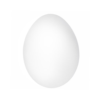 White egg isolated on white background. one chicken egg closeup.