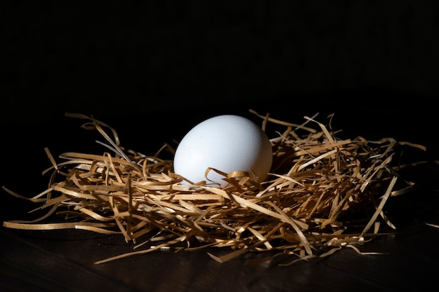 White egg in a nest. close-up