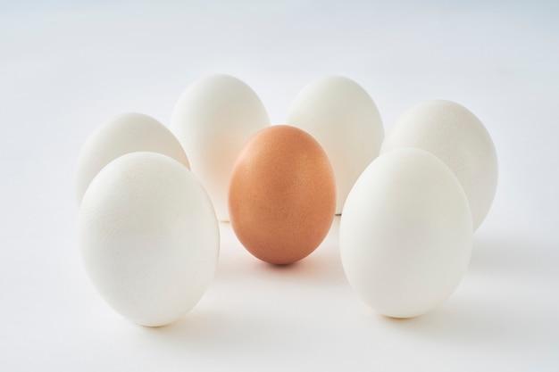 White eggs around brown egg on white background.