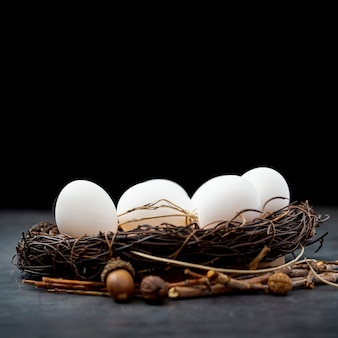 White eggs in a nest
