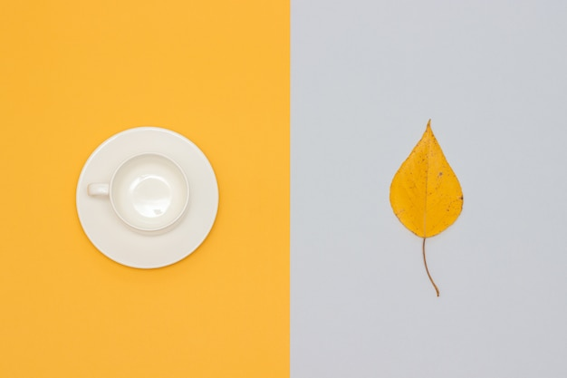 White empty cup with saucer and autumn leaf