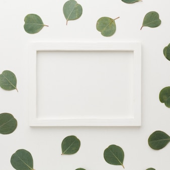 White empty frame surrounded by leaves
