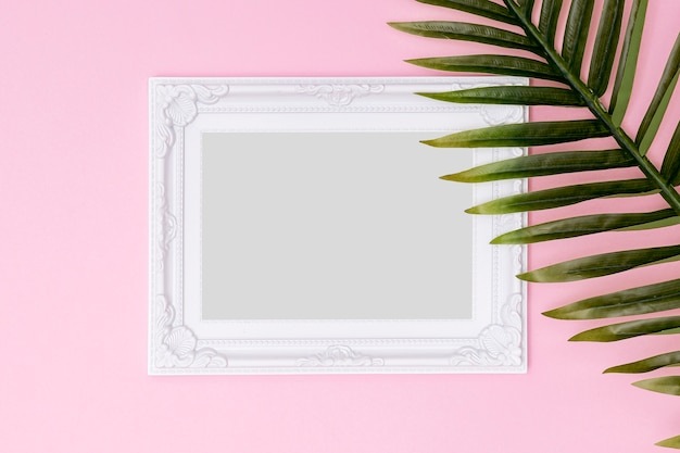 White empty frame with fern leaf