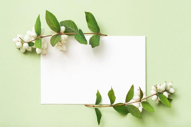 Белая пустая бумага. праздничное приветствие. декоративная композиция из омелы.