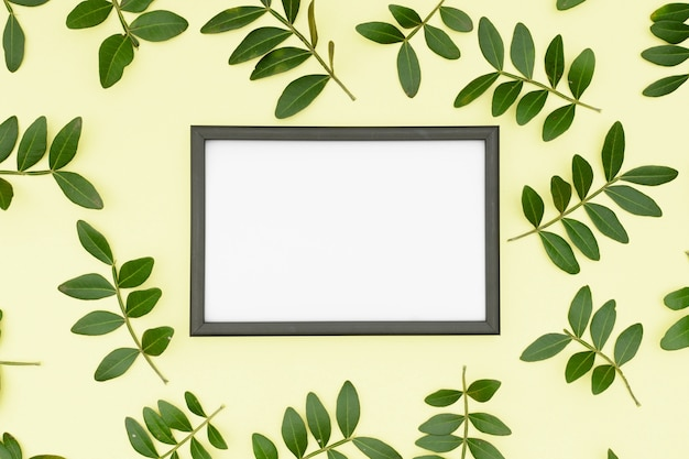 White empty picture frame surrounded by leaves twig on yellow background