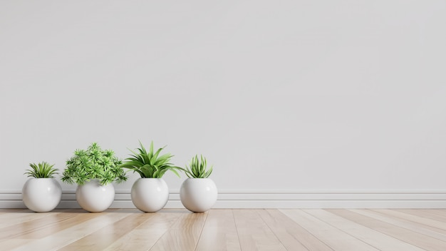 White empty room with plants on a floor.