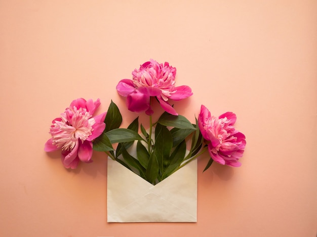 White envelope with pink peonies inside on a pink background. template for newsletters and other mail designs.