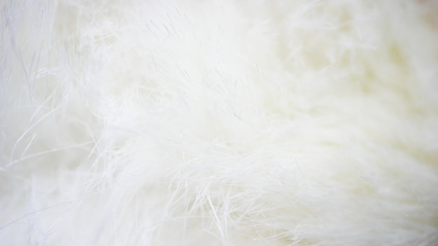White fabric background, white cloth and soft white fur
