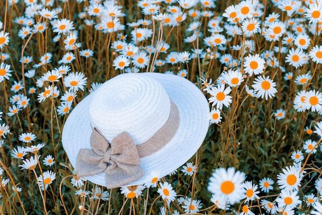 카모마일 필드에 흰색 여성 모자, 도보 개념, 로맨스, 사랑, 아름다움