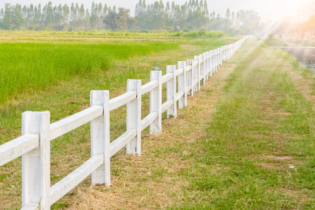 White fence in farm