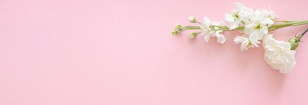 母の日、結婚式、バレンタインデーのピンクの背景バナーに白い花のカーネーションとモックアップ上面図のコピースペース