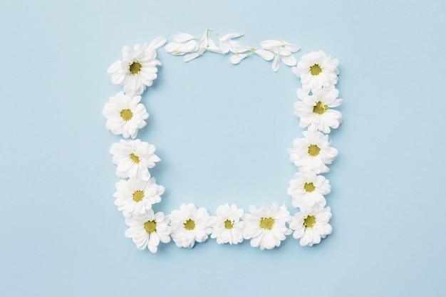 White flower forming square frame on plain background