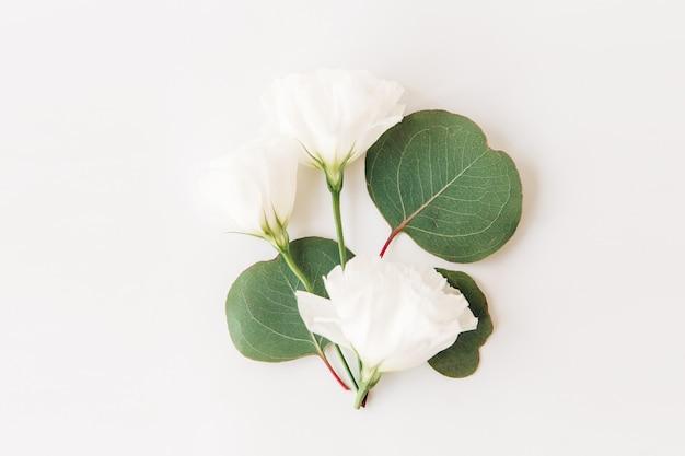 白い花と緑の葉composition.flatlay、white.floral背景に分離。
