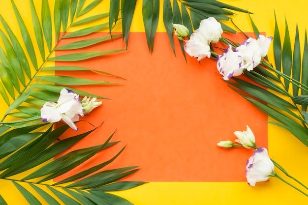 白い花と黄色の背景に空白のオレンジ紙に葉