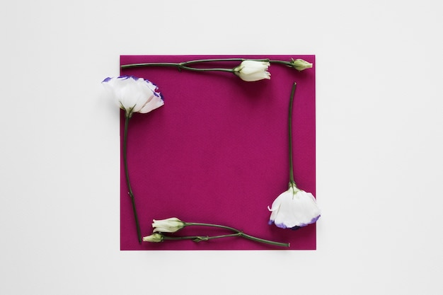 White flowers frame surrounding an empty piece of paper