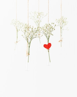 White flowers in glass mini vases hanging. concept of valentine's day, wedding