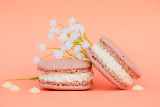 White flowers near the macaroons on coral background