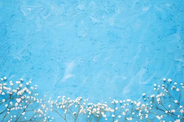 Белые цветы на синем фоне. весенние цветы фон вид сверху.