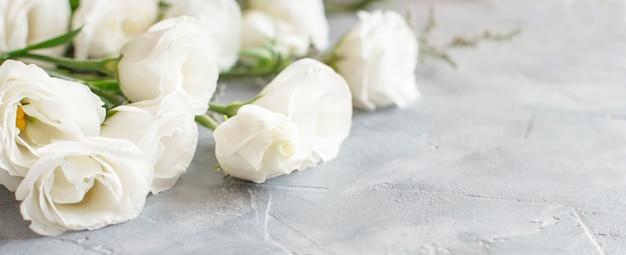 灰色の背景に白い花をクローズアップ