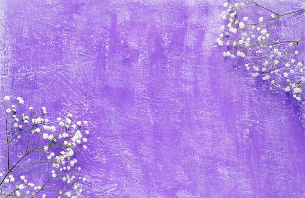 Белые цветы на фиолетовом фоне. весенние цветы фон вид сверху.