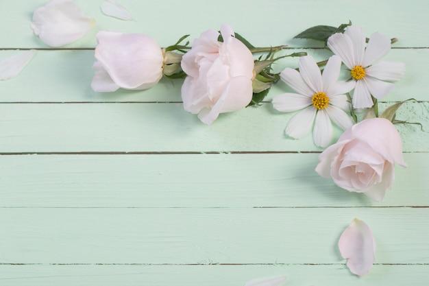Белые цветы на фоне зеленой бумаги