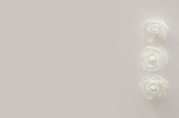 Белые цветы на белом фоне, со свободным пространством для текста, копией пространства. белые розы. минималистичный дизайн. фон на день рождения, женский день, юбилей, свадьбу. вид сверху, плоская планировка.