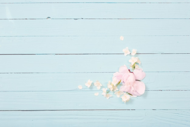White flowers on white wooden background