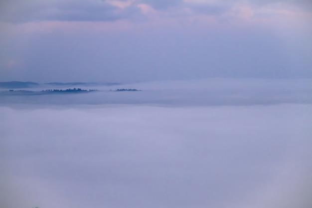 白い霧が冬の美しい景色と朝の緑の山々をカバーしています。