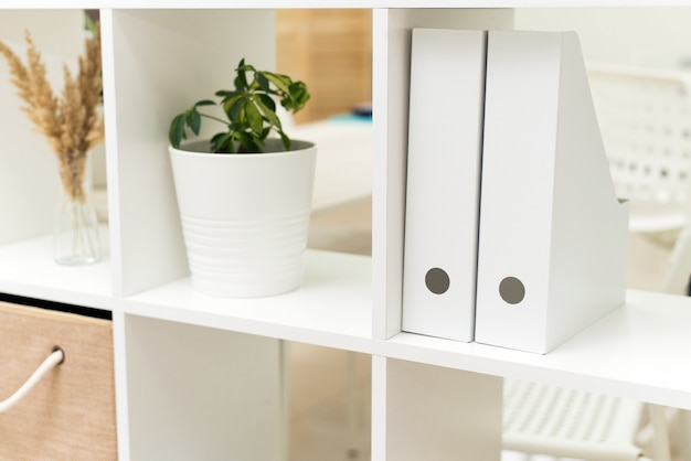 White folders for documents, plants in the office and boxes in a working open cupboard. image of board with documents in office.