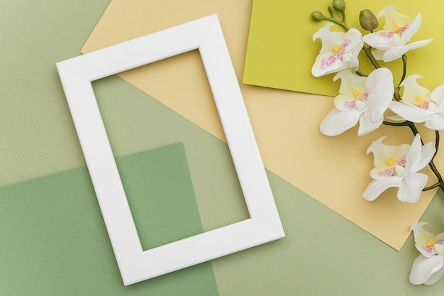白いフレームと幾何学的な緑の色合いの紙の背景に蘭の花の枝。コピースペース、デザインのモックアップ。春や夏のコンセプト