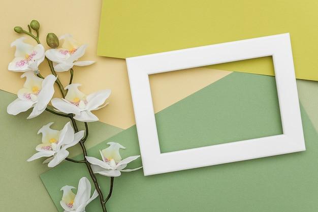 白いフレームと幾何学的な緑の色合い紙の背景に蘭の花の枝。