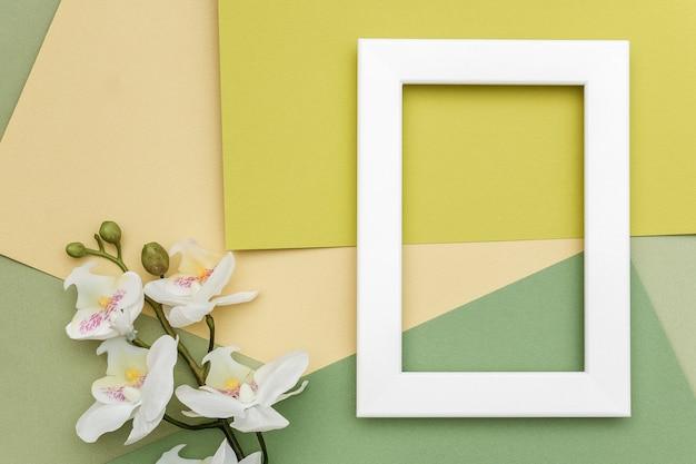白いフレームと幾何学的な緑の色合いの紙の背景に蘭の花の枝。