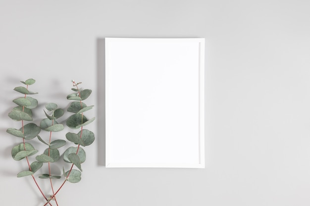 Белая рамка и эвкалипт на сером столе