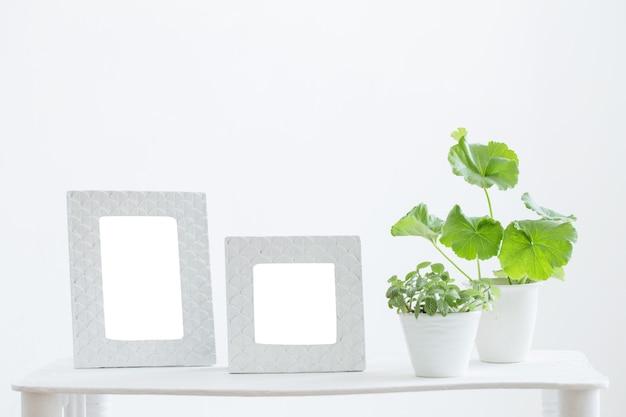 Белая рамка и зеленые растения на полке на белой поверхности