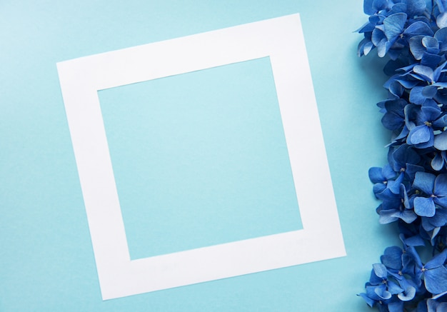 White frame and blue hydrangea flowers on blue background