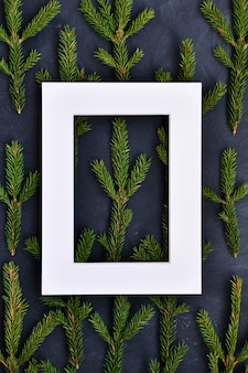White frame on the fir branches on dark