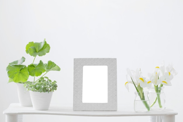 Белая рамка, зеленые растения и весенние цветы на полке на белом фоне
