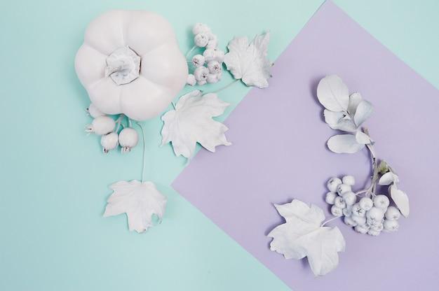 カボチャ、ベリー、ターコイズとバイオレットのパステル紙秋の背景の葉と白いフレームモックアップ。